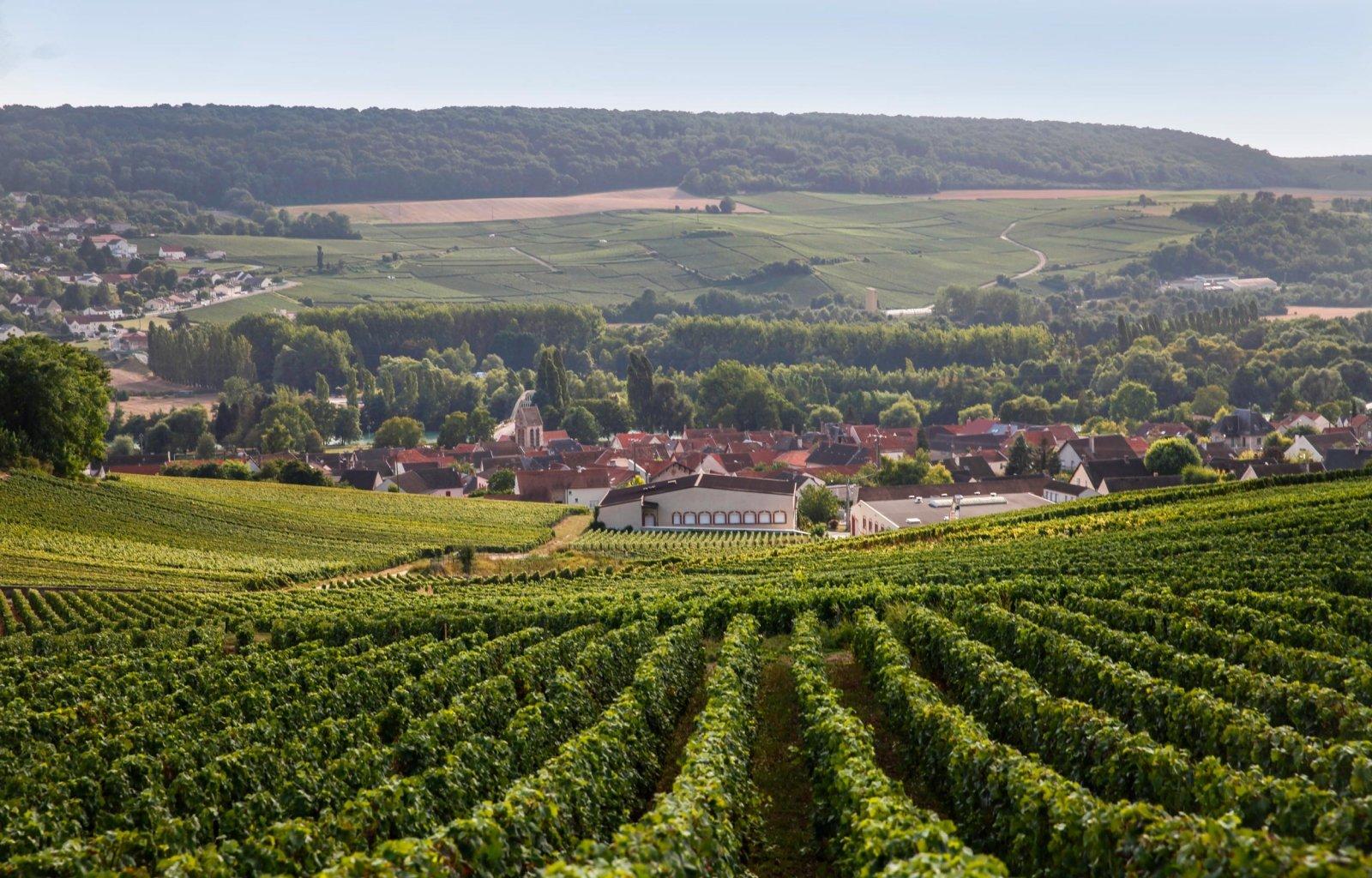 Village de Reuil situé au milieu du vignoble